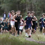 Schools sport cross country